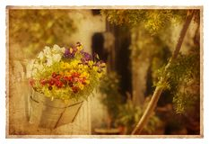 Vintage garden Stock Images