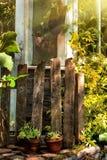 Vintage garden Stock Photography