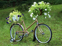 Vintage garden bicycle Royalty Free Stock Photos
