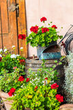 Vintage Garden Decoration. Vintage Objects, Flowers and Background Stock Images