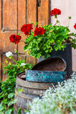 Vintage Garden Decoration. Vintage Objects, Flowers and Background Stock Photo