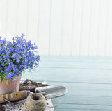 Vintage garden tools. And blue flowers in terracotta flower pots - concept for gardening royalty free stock image