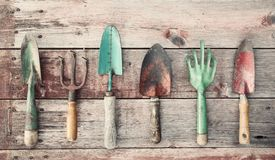 Vintage garden tools on an old rustic wood background. Vintage garden tools lined up in a row on an old rustic wood background Stock Images