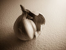Vintage garlic Royalty Free Stock Photo