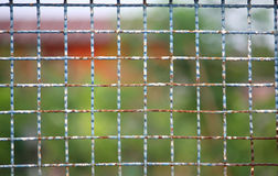 Vintage gate background Royalty Free Stock Photography