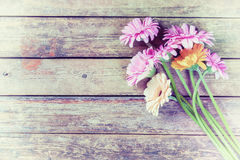Vintage Gerbera Flowers on Wooden Backgdrop Royalty Free Stock Photography