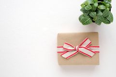 Vintage gift box with copy space, birthday, anniversary backgrou Royalty Free Stock Photo