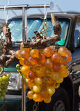 Vintage glass grape at flea market Royalty Free Stock Photos