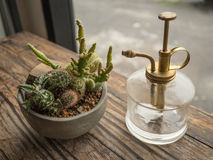 Vintage glass spray bottle with brass nozzle. Close up vintage glass spray bottle with brass nozzle placed next to small cactus in gray terracotta pot with Royalty Free Stock Photography