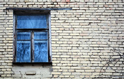 Vintage glass window with reflection of tree and blue sky. Old window on the facade of a brick house.  Abandoned brick building with grunge window Royalty Free Stock Image