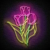 Vintage Glow Signboard with Bouquet of Tulips Stock Photos