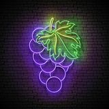 Vintage Glow Signboard with Grape, Organic Fruit vector illustration