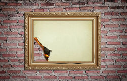 Vintage gold frame with burned on wall Stock Photography