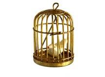 Vintage golden birdcage Royalty Free Stock Images