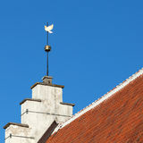 Vintage golden Dove weather vane in Tallinn Royalty Free Stock Image