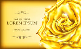 Vintage golden rose with the text on the card or invitation. Vec Stock Images