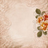 Vintage gorgeous  background with lace and roses Royalty Free Stock Images