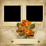 Vintage gorgeous background with a polaroid-frames and a roses Stock Photos