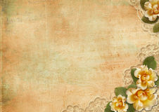 Vintage gorgeous background with a  roses and lace Stock Photo