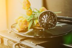 Vintage gramophone and flowers. Vintage gramophone with a vinyl and flowers royalty free stock photo