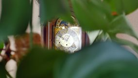 Vintage grandfather clock ticking on wall stock video