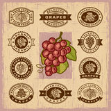 Vintage grapes stamps set Royalty Free Stock Photos