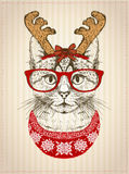 Vintage graphic poster with hipster cat with red glasses,  dressed in deer horns hat and red knitted sweater Stock Image