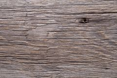 Vintage gray wood texture. Abstract background. Vintage gray wood texture. Abstract background royalty free stock images