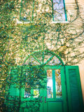 Vintage green door Royalty Free Stock Photography