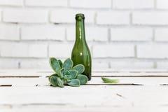 Vintage green glass bottle and desert rose Stock Images