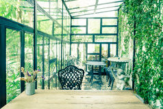 Vintage green glasshouse interior Royalty Free Stock Images
