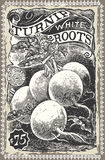 Vintage Greengrocer - Turnip Advertising Stock Photos