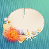Vintage greeting card. With shells and starfishes and place for text Royalty Free Stock Images