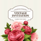 Vintage  Greeting Card with Blooming peony and rose Flowers.  Vector Illustration Royalty Free Stock Photos