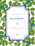 Vintage Greeting Card with Blueberry with Leafs. Natural Organic Stock Photo