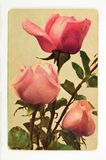 Vintage greeting card with flowers Stock Image