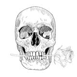 Vintage Greeting Card with Hand Drawn Skull and Stock Photos
