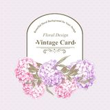 Vintage Greeting Card with Hydrangea and Peonies Royalty Free Stock Image