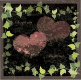 Vintage greeting card with the image of a wild ivy Royalty Free Stock Images