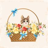 Vintage greeting card with kitten Stock Images