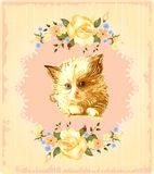 Vintage greeting card with kitten Stock Photos
