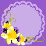 Vintage greeting card with narcissus and pansy flower Royalty Free Stock Images