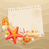 Vintage greeting card with shells Vector Illustration