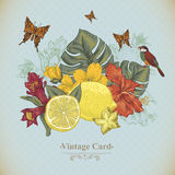 Vintage Greeting Card Tropical Fruit, Flowers Royalty Free Stock Images