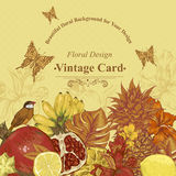 Vintage Greeting Card Tropical Fruit, Flowers. Butterfly and Birds, Vector Illustration. Pineapple and Pomegranate, Lemon Banana and Hibiscus Royalty Free Stock Photography