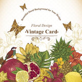 Vintage Greeting Card Tropical Fruit, Flowers, Butterfly and Birds Stock Photos