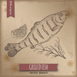 Vintage grilled fish template. Placed on old paper background. Great for markets, grocery stores, organic shops, food label design Stock Image