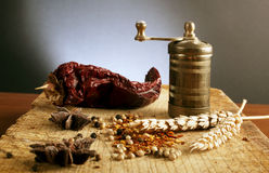 Vintage grinder with spices Stock Image