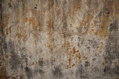 Vintage grunge blank wall texture Royalty Free Stock Image