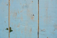 Vintage grunge blue background of natural wood old texture Royalty Free Stock Image